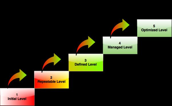 Data Management Maturity Levels