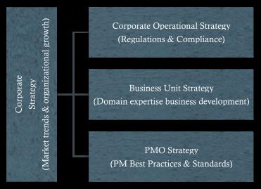Multiple Corporate Strategies